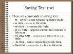 saving text w