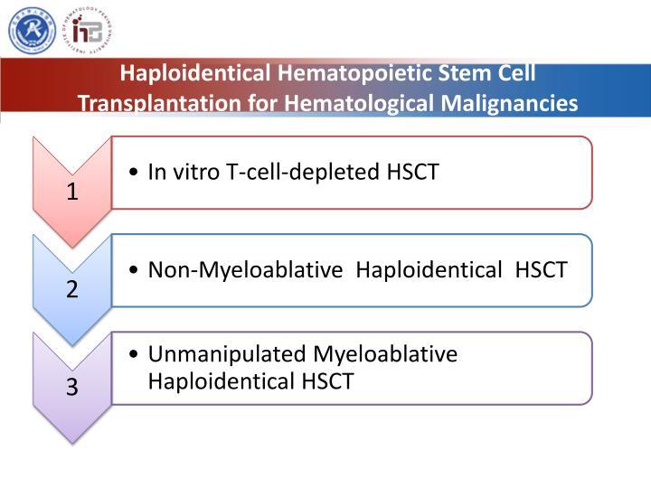 Haploidentical Hematopoietic Stem Cell Transplantation for Hematological Malignancies