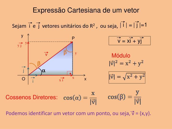 Express o cartesiana de um vetor