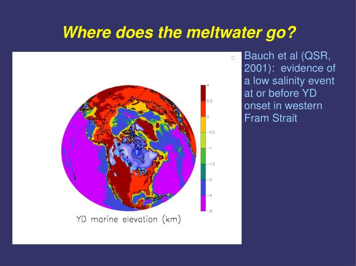Where does the meltwater go?