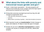 what about the links with poverty and transversal issues gender and gov