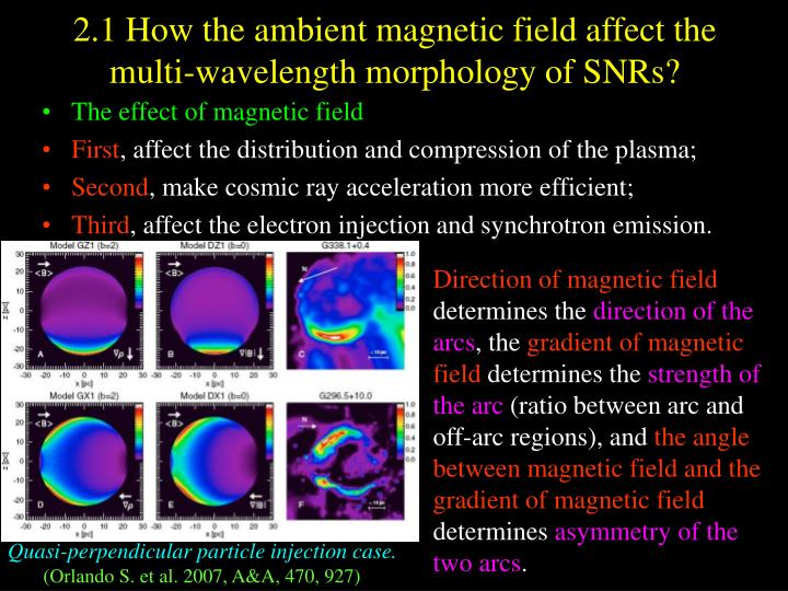 2.1 How the ambient magnetic field affect the multi-wavelength morphology of SNRs?