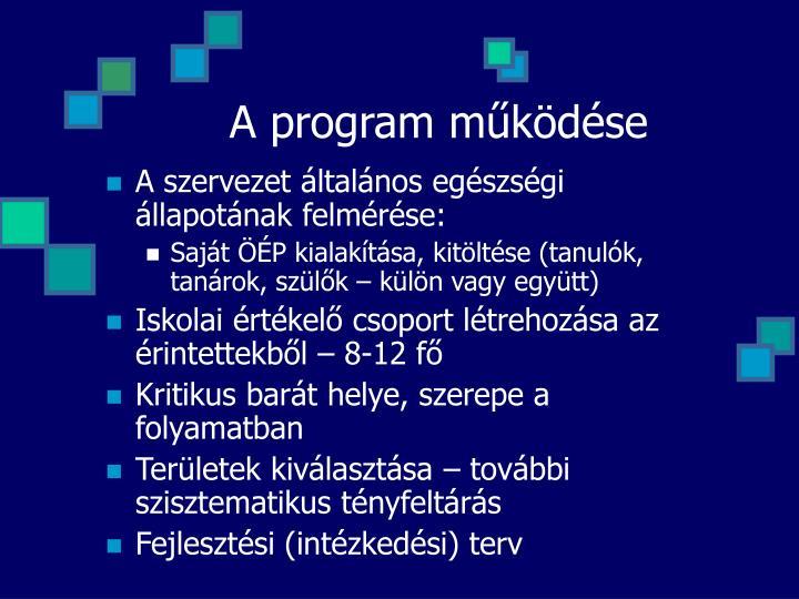 A program működése