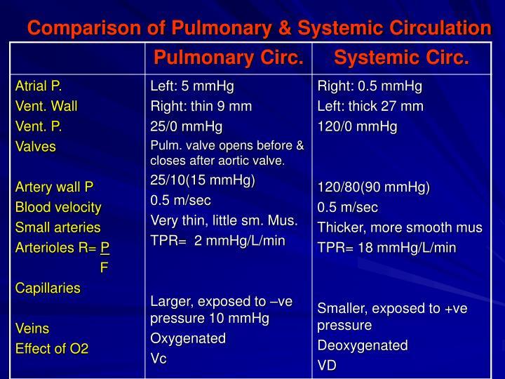 Comparison of Pulmonary & Systemic Circulation