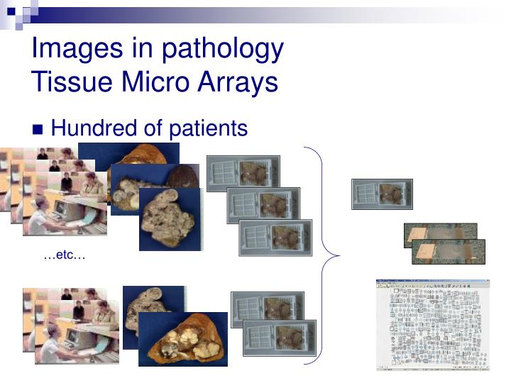 Images in pathology