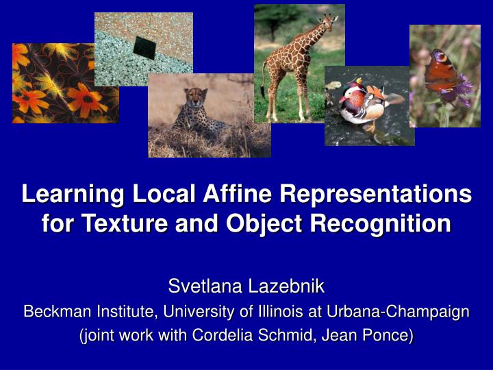 learning local affine representations for texture and object recognition n.