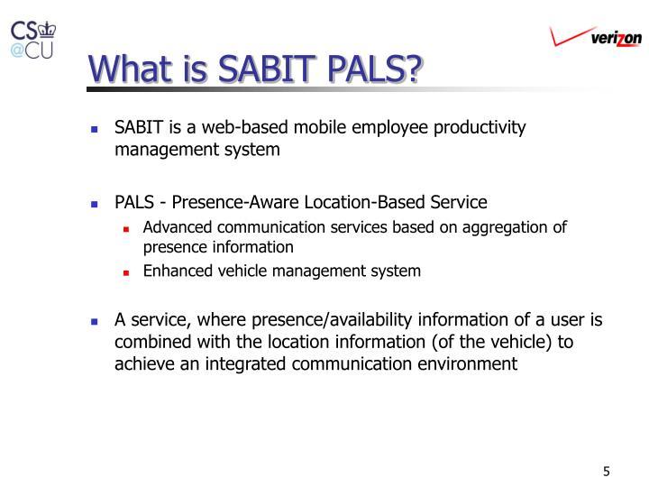 What is SABIT PALS?
