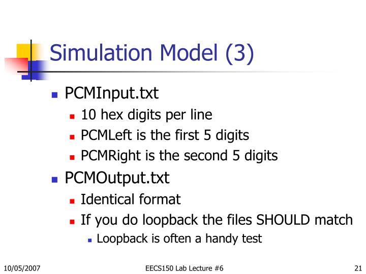 Simulation Model (3)