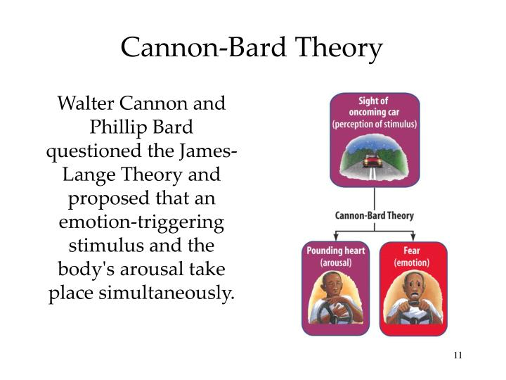 Cannon-Bard Theory