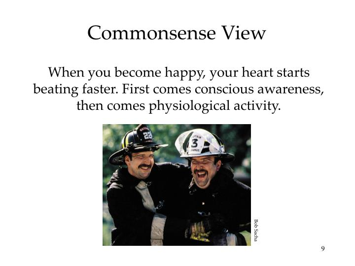 Commonsense View