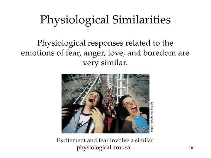 Physiological Similarities