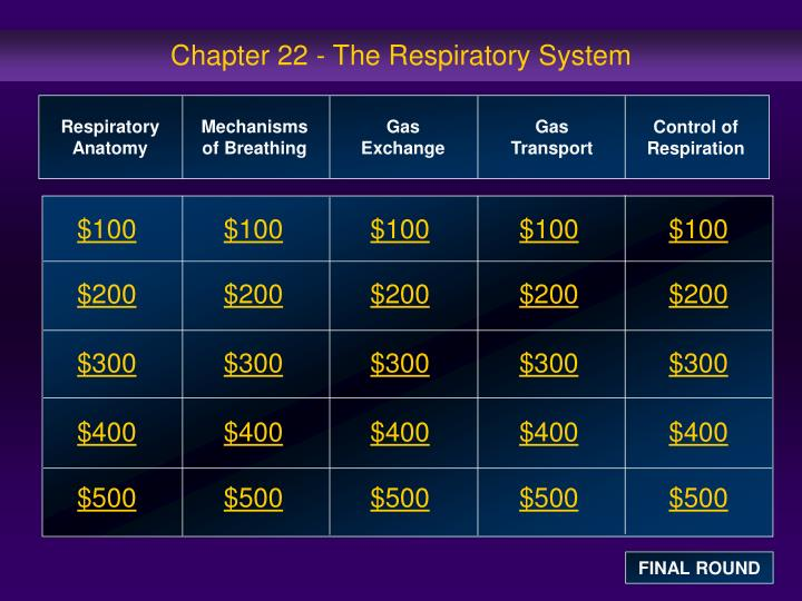 chapter 22 the respiratory system n.