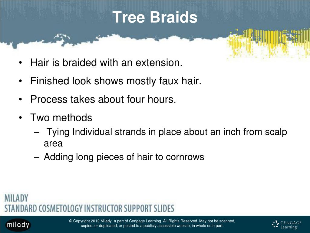 Ppt Chapter 18 Braiding And Braid Extensions Powerpoint