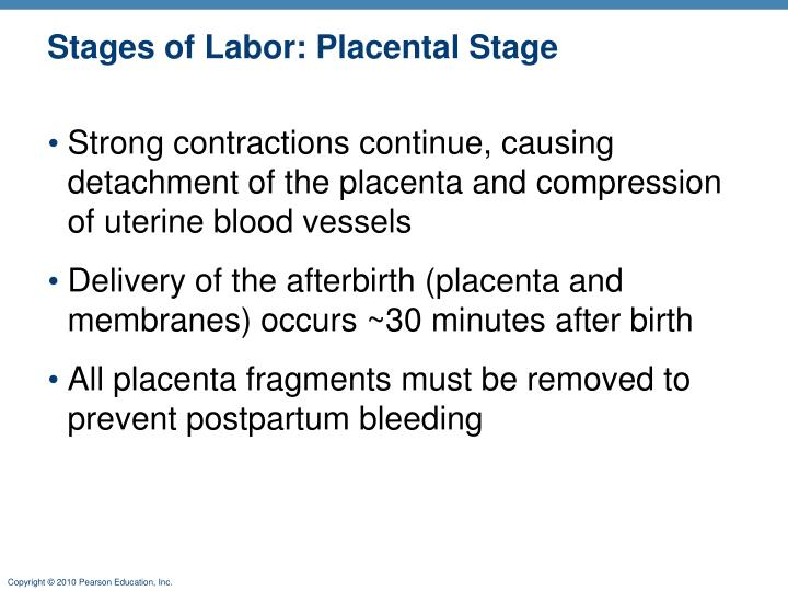 Stages of Labor: Placental Stage