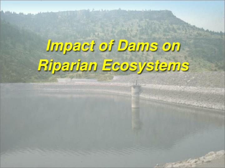 Impact of Dams on Riparian Ecosystems