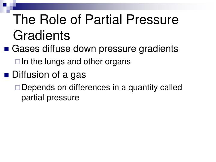 The Role of Partial Pressure Gradients
