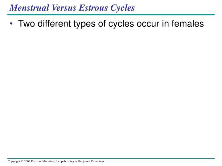 Menstrual Versus Estrous Cycles