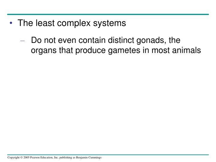 The least complex systems