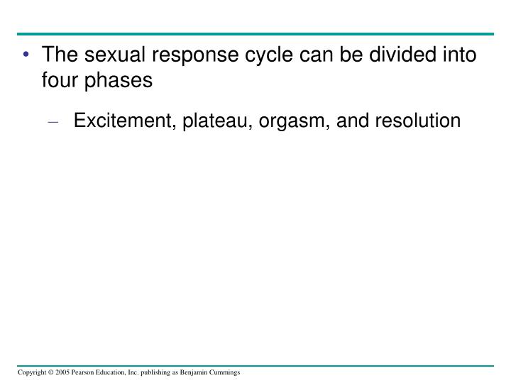 The sexual response cycle can be divided into four phases