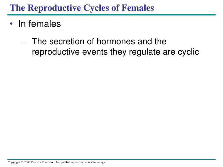 The Reproductive Cycles of Females