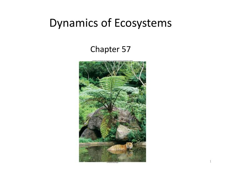 dynamics of ecosystems chapter 57 n.