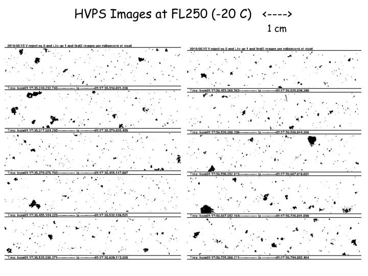 HVPS Images at FL250 (-20 C)