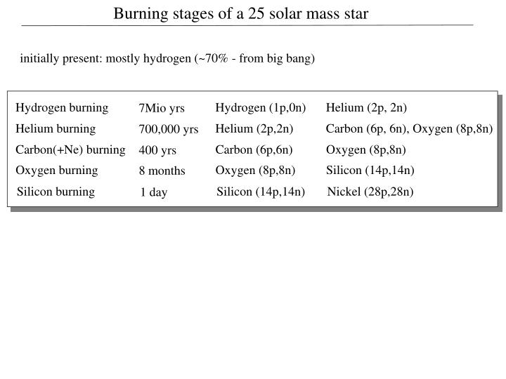 Burning stages of a 25 solar mass star