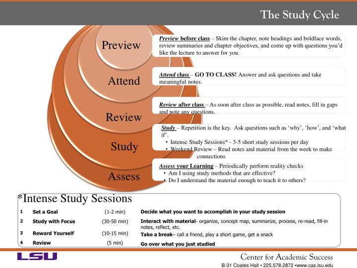 The Study Cycle