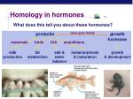 homology in hormones