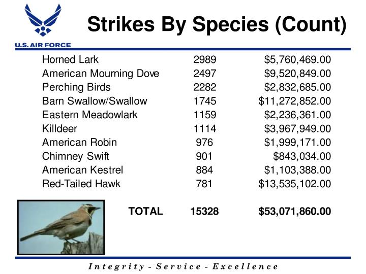Strikes By Species (Count)