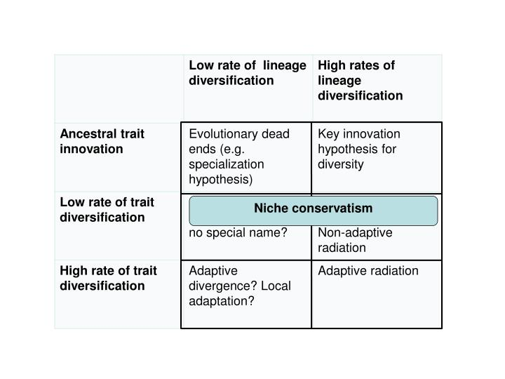 key innovations and adaptive radiations essay Summary adaptive radiation is the rise of a diversity of ecological roles and role-specific adaptations within a lineage recently, some researchers have begun to use 'adaptive radiation' or 'radiation' as synonymous with 'explosive species diversification.