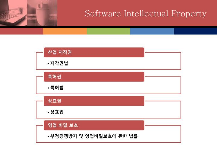 Software Intellectual Property
