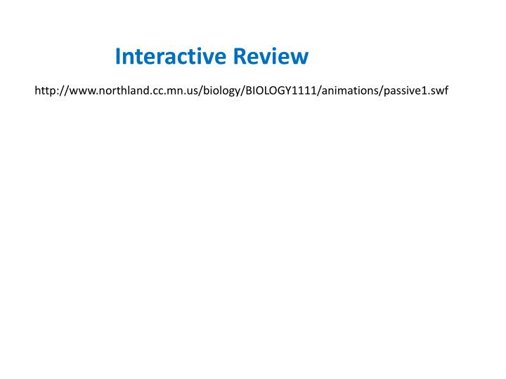 Interactive Review