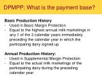 dpmpp what is the payment base1