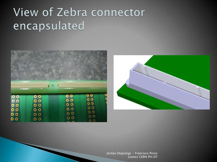 View of Zebra connector encapsulated