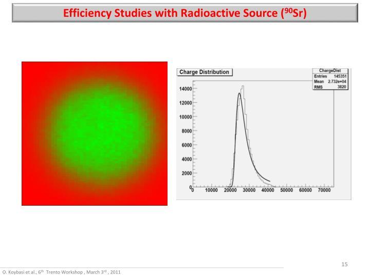Efficiency Studies with Radioactive Source (