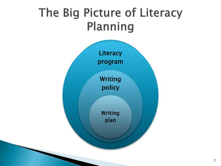 The Big Picture of Literacy Planning
