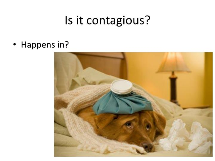Is it contagious?