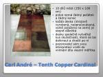 carl andr tenth copper cardinal
