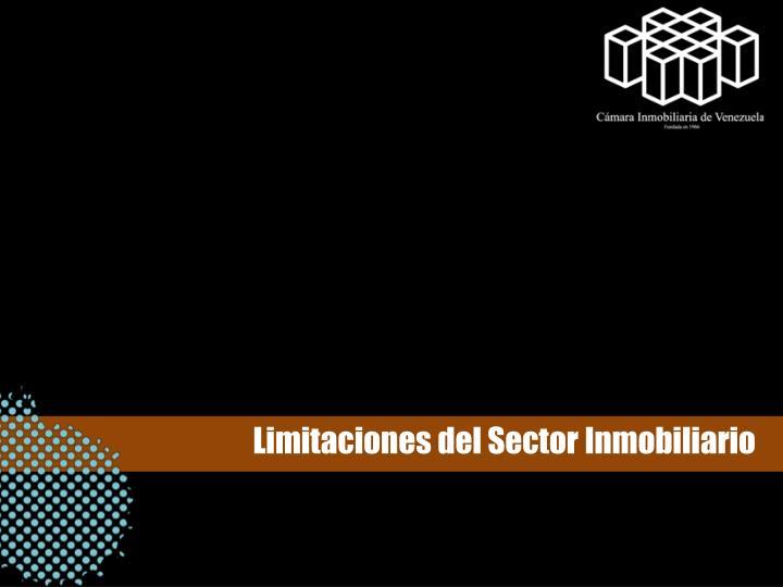 Limitaciones del Sector Inmobiliario