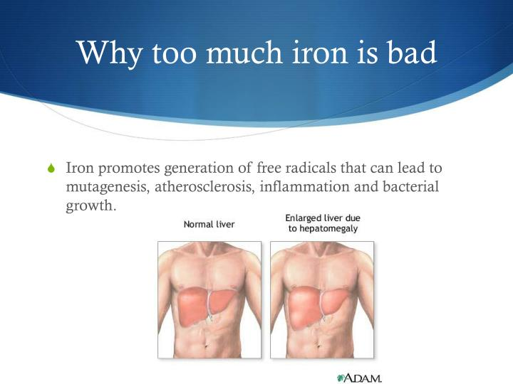 Why too much iron is bad