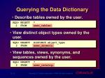 querying the data dictionary