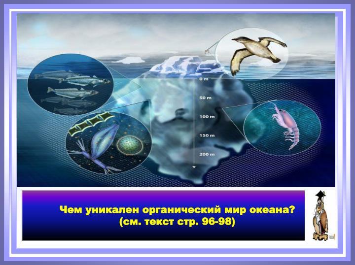 Чем уникален органический мир океана?