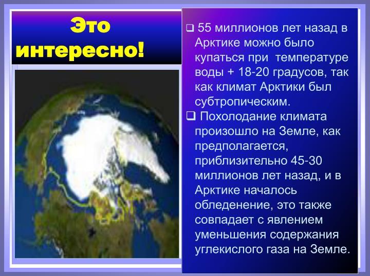 55 миллионов лет назад в Арктике можно было купаться при  температуре воды + 18-20 градусов, так как климат Арктики был