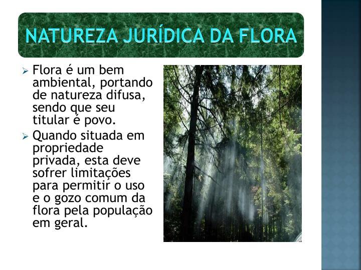 NATUREZA JURÍDICA DA FLORA