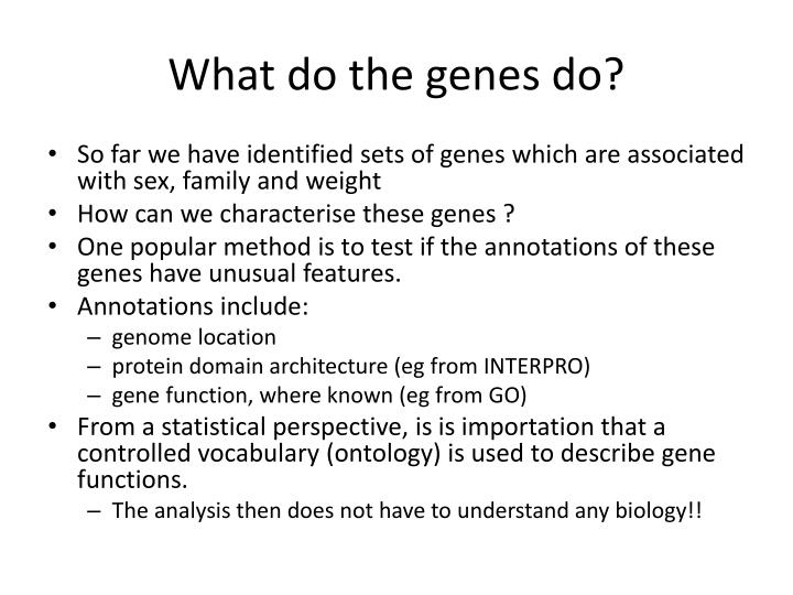What do the genes do?