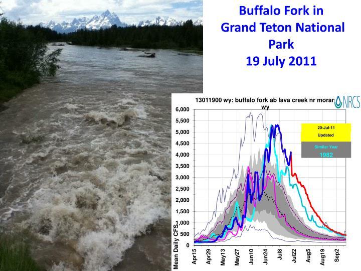 Buffalo Fork in
