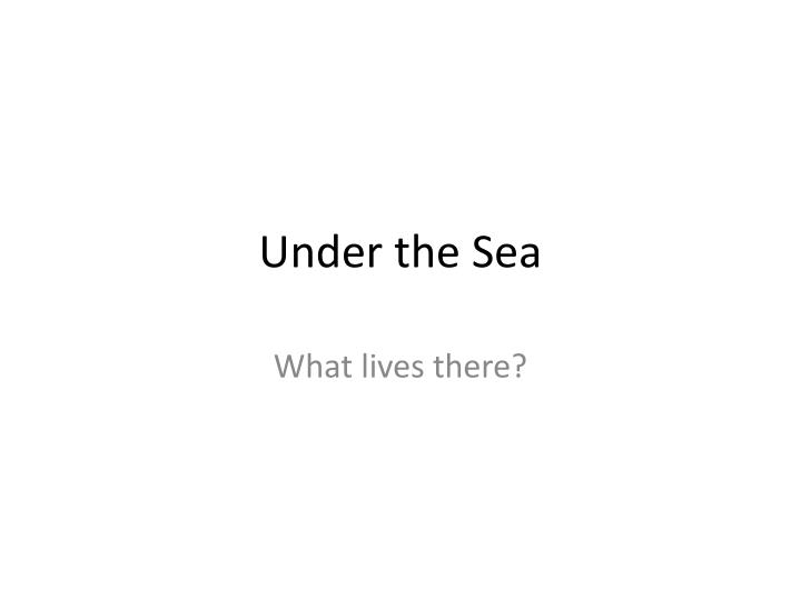 under the sea n.