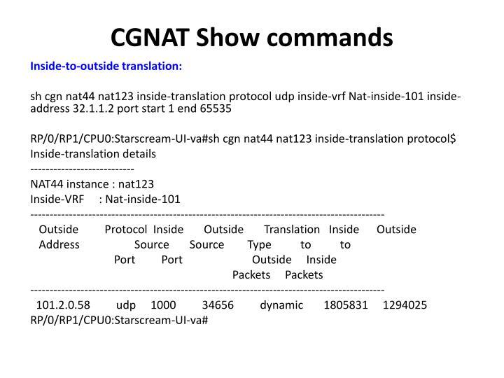 CGNAT Show commands