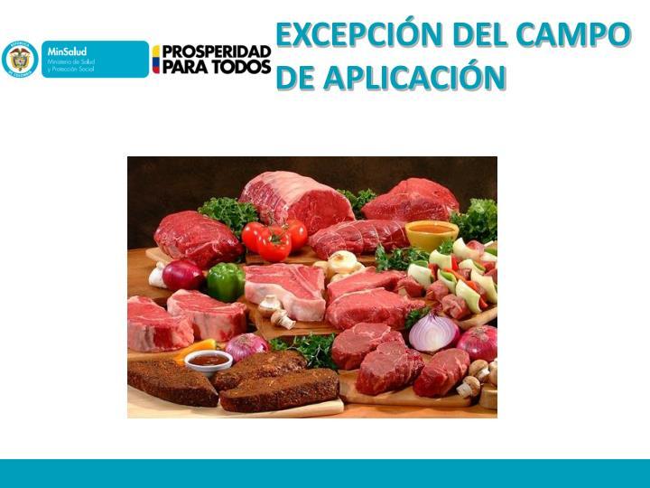 EXCEPCIÓN DEL CAMPO DE APLICACIÓN